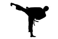Retroceso del karate Foto de archivo