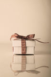 Retrol White Christmas Gift Box with Gingham Ribbon Royalty Free Stock Photo