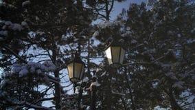 Retrostil-Straßen-Laternen auf Snowy-Tannen-Hintergrund stock footage