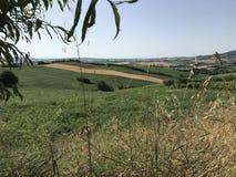 Retroterra della Marche, colline di Pesaro fotografia stock libera da diritti