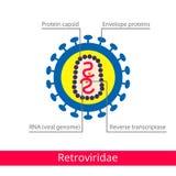 Retroviridae. Classification of viruses. Vector biology icons, medical virus icons vector illustration