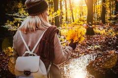Retrovisione del mazzo femminile della tenuta delle foglie di acero gialle di autunno in sue mani gloved Terreno coperto di fogli Fotografia Stock