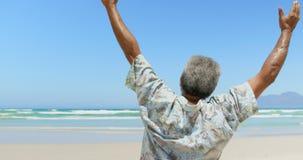Retrovisione dell'uomo afroamericano senior attivo con le armi sullo stare sulla spiaggia 4k video d archivio