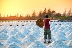 Retrovisione dell'uomo nell'azienda agricola del sale Immagine Stock