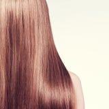 Retrovisione della donna con capelli lunghi Fotografia Stock