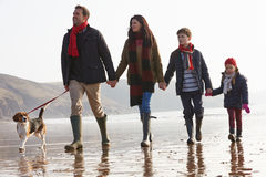 Retrovisione della famiglia che cammina lungo la spiaggia di inverno con il cane Fotografia Stock