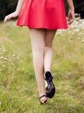 Retrovisione della giovane donna che si allontana nel parco di estate Fotografia Stock Libera da Diritti