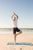 Retrovisione della posa di pratica attiva dell'albero dell'uomo senior alla spiaggia Fotografia Stock Libera da Diritti