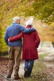 Retrovisione delle coppie senior che camminano lungo Autumn Path Fotografia Stock