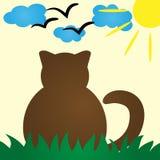 Retrovisione di Cat Silhouette Gatto che riposa pacificamente nell'erba C Fotografia Stock Libera da Diritti