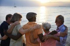 Retrovisione di diverso adulto senior che sta insieme alla spiaggia immagini stock libere da diritti