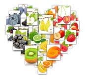 Rettangoli del preparato della frutta Immagine Stock