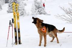 Retter von der Bergwacht am bulgarischen roten Kreuz Lizenzfreie Stockfotos