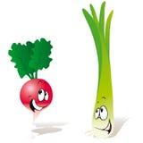 Rettich und grüne Zwiebel Lizenzfreies Stockbild