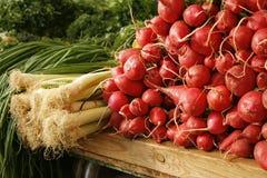 Rettich und Zwiebel auf dem Markt Stockbilder