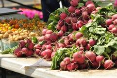 Rettiche, Kartoffeln des kleinen Fischs, gelbe Tomaten am Markt eines Landwirts lizenzfreies stockbild