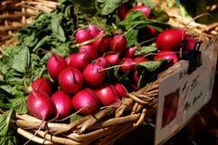 Rettiche am Markt des Landwirts lizenzfreies stockfoto