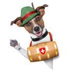 Rettungshund Lizenzfreie Stockfotografie