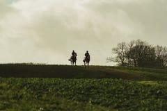 returing从在剪影的疾驰的赛马 免版税图库摄影