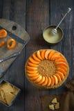 Returnera den gjorda honungkakan med aprikors på en trämörk bakgrund arkivbild