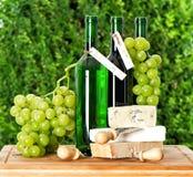 Returnera gjord vin, druvabär och ost Royaltyfria Foton