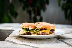 Returnera gjorda hamburgare på en platta på stenen stenlagd terrass Fotografering för Bildbyråer