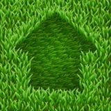 Returnera på grönt gräs. Arkivbilder