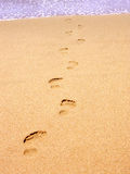 Returning to our roots?. Footprints on the beach returning to the ocean Royalty Free Stock Photography