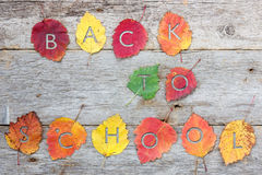 Returning to school in the fall Royalty Free Stock Photos