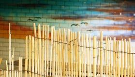 Retuschsprutaromans med Reed Fence Royaltyfri Bild