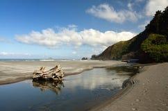 Retz zatoczka, humbuga stanu Halny park, curry'ego okręg administracyjny, Oregon Zdjęcia Stock