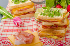 Reuben sandwich with cabbage, beef and spicy dressing Royalty Free Stock Photos