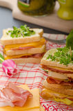 Reuben sandwich with cabbage, beef and spicy dressing Royalty Free Stock Photography
