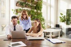 Reunião de negócio no escritório Grupo de executivos financeiros que conceituam no escritório fotos de stock royalty free