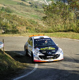 Reunião de Peugeot 207 Imagem de Stock