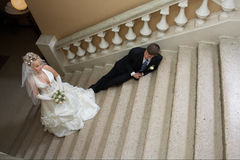 Reunião do amor Fotografia de Stock Royalty Free