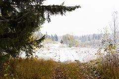 A reunião do outono e do inverno, a primeira neve em árvores do outono no parque Fotos de Stock