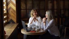 Reunión de comercialización llana multi de dos mujeres almacen de video