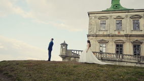 Reunión de los pares de la boda antes del castillo almacen de video