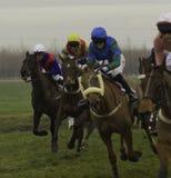 Reunión de punto a punto del caballo de carreras en Thorpe Lodge, Newark foto de archivo