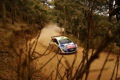 Reunión México de la corona de WRC Albert 2010 LLOVERA fotografía de archivo libre de regalías