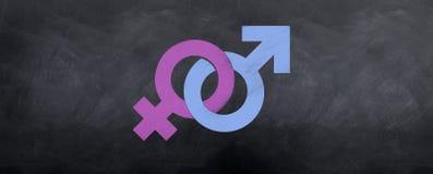 Reunión masculina y femenina de los símbolos Fotografía de archivo libre de regalías