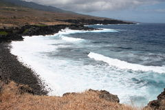 Reunion Island. Island La Reunion, Africa. French territory. Yellowish/brown field close to the volcanic coastline and the sea Stock Photos