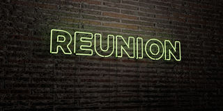 REUNION -Realistic Neon Sign on Brick Wall background - 3D rendered royalty free stock image Royalty Free Stock Photo