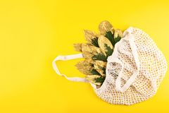Free Reusable Shopping Net Bag With Green And Golden Leaves On Yellow Fall Autumn Background. Top View Of Eco Friendly Mesh Shopping Royalty Free Stock Images - 159905569