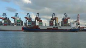 Reusachtig containerschip stock footage