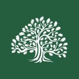 Reusachtig en heilig eiken die het embleemkenteken van het boomsilhouet op bruine achtergrond wordt geïsoleerd vector illustratie