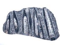 Reusachtig orthoceras fossiel beeldhouwwerk in zwart marmer Stock Foto's