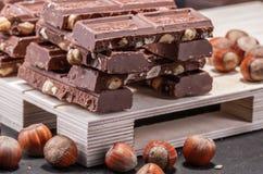 Reusachtig van chocolade met gehele hazelnoten Op de pallet Bruine tonaliteit stock afbeelding