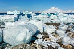 Reusachtige blauwe ijsbergen die driftingand aan wal met Sermitsiaq-mou leggen royalty-vrije stock foto